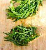 De bladeren van de besnoeiingsdragon Stock Fotografie