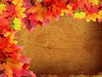 De bladeren van de daling op houten achtergrond Royalty-vrije Stock Foto's
