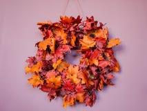 De bladeren van de de herfstesdoorn in cirkel Stock Afbeeldingen