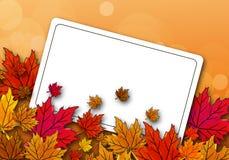 De bladeren van de de herfstesdoorn op een prentbriefkaar Stock Afbeeldingen