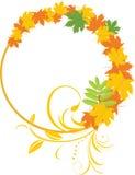De bladeren van de esdoorn met bloemenornament in het frame Royalty-vrije Stock Afbeelding