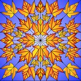 De Bladeren van de Esdoorn van het gebrandschilderd glas Stock Afbeeldingen