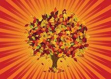 De bladeren van de herfst - boom Stock Foto's