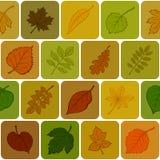 De bladeren van de herfst, naadloze achtergrond vector illustratie