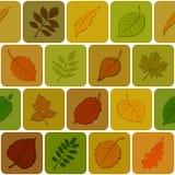 De bladeren van de herfst, naadloze achtergrond Stock Foto's