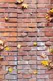 De bladeren van de herfst op baksteen Royalty-vrije Stock Foto