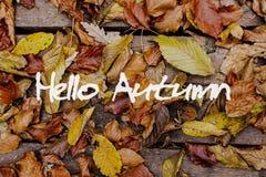 De bladeren van de herfst op houten achtergrond Hello Autumn Concept Wallpaper Stock Fotografie
