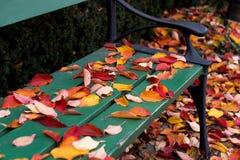 De bladeren van de herfst op parkbank Royalty-vrije Stock Afbeelding
