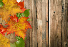 De Bladeren van de herfst over houten achtergrond Stock Foto