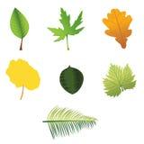 De bladeren van de inzameling Stock Afbeelding