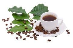De bladeren van de koffieboom en bonen en kop van koffie Stock Afbeelding