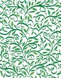 De bladeren van de lente Royalty-vrije Stock Afbeeldingen