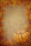 De bladeren van de pompoen en van de Esdoorn Royalty-vrije Stock Afbeelding