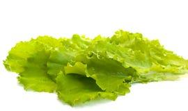 De bladeren van de salade Royalty-vrije Stock Afbeelding