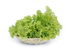 De bladeren van de salade Stock Afbeeldingen