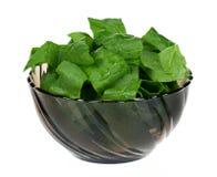 De bladeren van de spinazie Royalty-vrije Stock Foto's