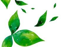 De bladeren van de waterverf stock illustratie