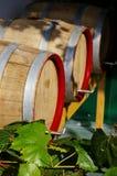 De bladeren van de wijnstok met wijnvatten op de achtergrond Stock Afbeelding