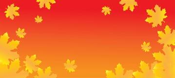 De bladeren van de de herfstesdoorn op de achtergrond van het de herfstlandschap royalty-vrije stock fotografie
