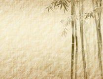 De bladeren van het bamboe op oud grunge antiek document