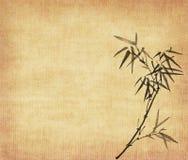 De bladeren van het bamboe op oude grungeachtergrond Stock Afbeeldingen