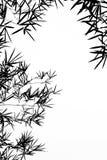 De Bladeren van het bamboe silhouetteren Achtergrond Stock Afbeelding