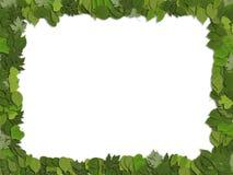 De bladeren van het frame Stock Afbeelding