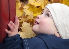 De bladeren van het kind en van de herfst Stock Afbeelding