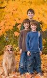 De Bladeren van jongens in de herfst Royalty-vrije Stock Foto
