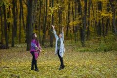 De bladeren zijn in de lucht Royalty-vrije Stock Afbeeldingen