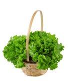 De bladeren zijn succulente groene salade in een mand Stock Foto's