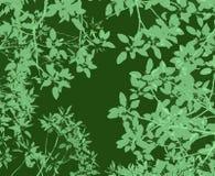 De bladerenachtergrond van de gom vector illustratie