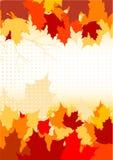 De bladerenachtergrond van de herfst royalty-vrije illustratie