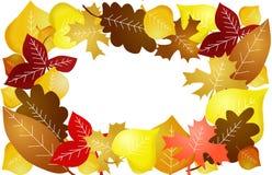 De bladerenachtergrond van de seizoenherfst Stock Afbeeldingen