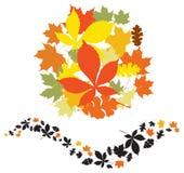 De bladerenelementen van de herfst Stock Foto's