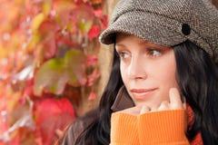 De bladerenportret van de herfst van mooi vrouwelijk model Stock Afbeelding