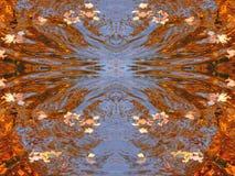 De bladerensamenvatting van de de herfstesdoorn Stock Foto's