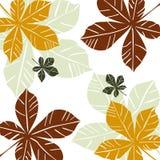 De bladerenvector van de herfst Stock Afbeeldingen