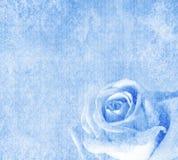 De blauwe achtergrond met nam toe Royalty-vrije Stock Foto
