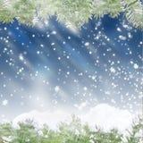 De blauwe achtergrond van Kerstmis met pijnboomtakken Stock Fotografie