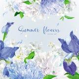 De blauwe achtergrond van de zomerbloemen royalty-vrije illustratie