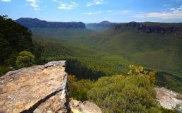 De blauwe bergen in Australië Stock Foto