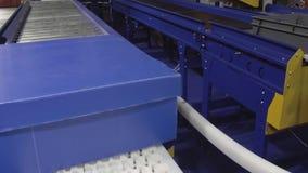 De blauwe bewegingen van de kartondoos langs een roltransportband stock footage