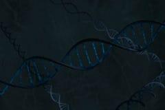 De blauwe dubbele schroef van DNA, het diagonale onder ogen zien Stock Afbeelding