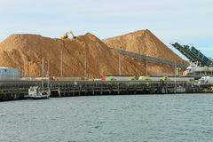 De blauwe gomhoutspaanders stapelden zich omhoog bij de haven van Portland op, wachtend aan Stock Afbeelding
