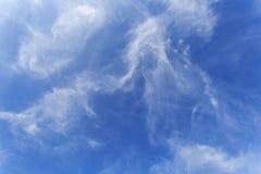 De Blauwe hemel stock foto's
