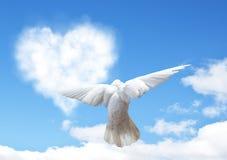 De blauwe hemel met harten vormt wolken en duif Stock Foto