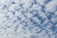 In de blauwe hemel schikten de witte Cumuluswolken in een net of een patroon stock foto's