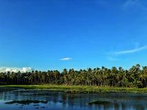 De blauwe hemel van de meerwolk en groene grassen stock foto's