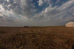 De blauwe hemel van Mongolië Royalty-vrije Stock Afbeeldingen